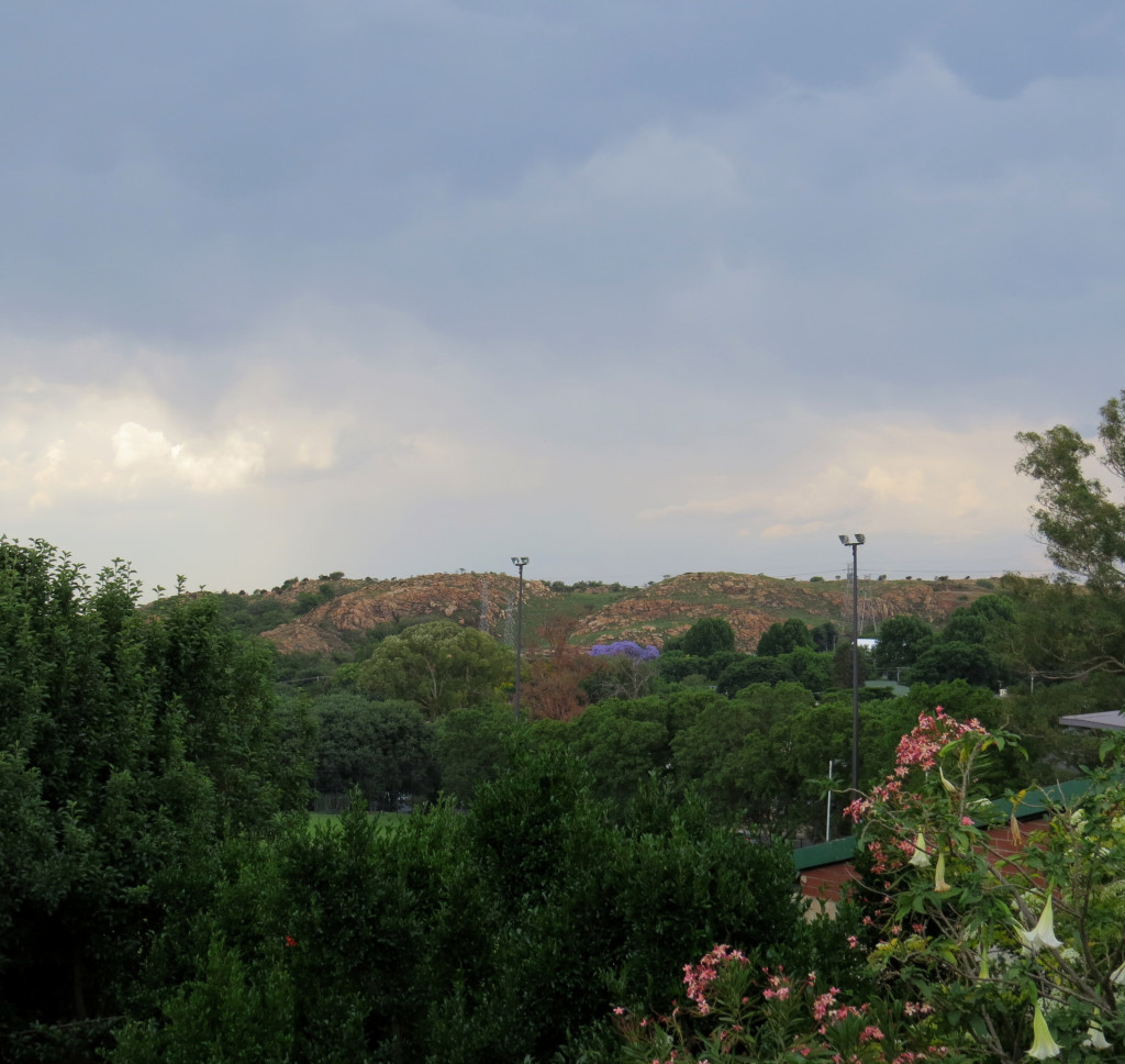 viewofkoppies